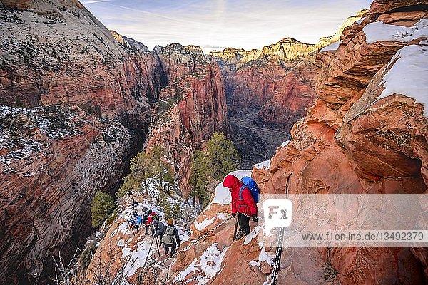 Junge Frau wandert am Klettersteig beim Abstieg von Angels Landing  Angels Landing Trail  im Winter  Zion Canyon  Berglandschaft  Zion Nationalpark  Utah  USA  Nordamerika