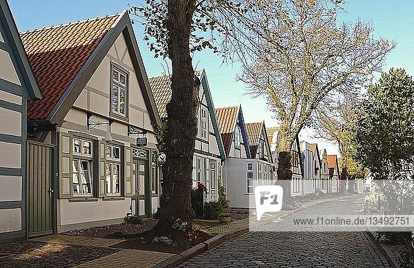 Wohnhäuser in der Alexandrinenstraße  Warnemünde  Rostock  Mecklenburg-Vorpommern  Deutschland  Europa