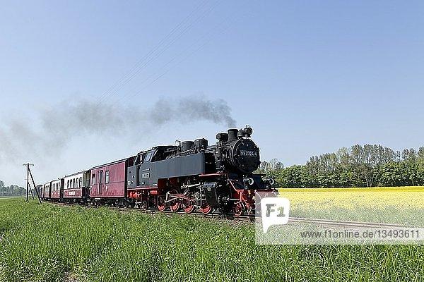 Dampfzug Molli  Klein Bollhagen  Mecklenburg-Vorpommern  Deutschland  Europa