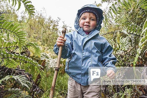 Kleines Mädchen beim wandern im El Bosque Encantado  gemäßigter Regenwald mit Moos und Flechten  Carretera Austral  Queulat National Park  Cisnes  Región de Aysén  Chile  Südamerika