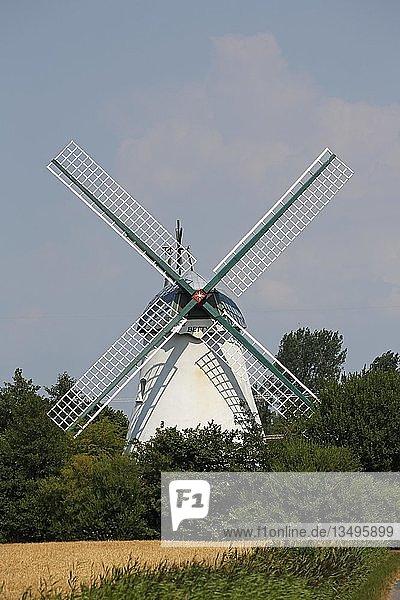 Windmühle Betty  Typ Turmholländer  niedersächsische Mühlenstraße  Lüdingworth  Niedersachsen  Deutschland  Europa
