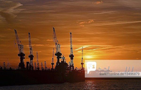 Sonnenuntergang  Silhouette  Hamburger Hafen mit Hafenkränen  Hamburg  Deutschland  Europa