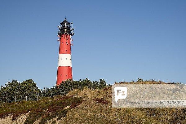 Leuchtturm von Hörnum  Sylt  Nordfriesland  Schleswig-Holstein  Deutschland  Europa