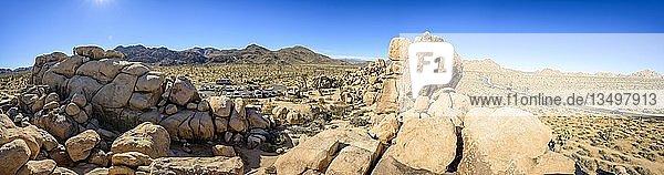 Boulder  Gewaltige Granitfelsen  Quail Springs Picnic Area  Joshua-Tree-Nationalpark  Desert Center  Kalifornien  USA  Nordamerika