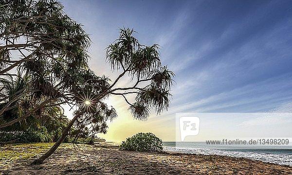 Sonnenaufgang am Strand von Kahandamodara  Sri Lanka  Asien