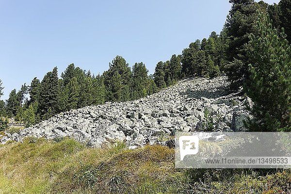 Abgegangene Gerölllawine,  Biotop Plamorter Moos,  am Reschenpass,  Vinschgau,  Südtirol,  Italien,  Europa