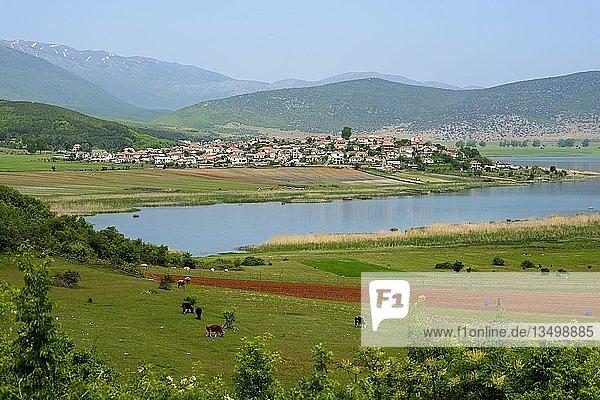 Dolna Gorica am Prespa-See  Nationalpark Prespa  Albanien  Europa