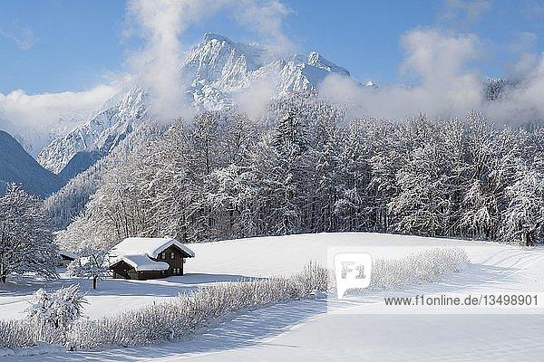 Winterlandschaft  verschneites Holzhaus  hinten Hochkalter  Bischofswiesen  Berchtesgadener Land  Oberbayern  Bayern  Deutschland  Europa