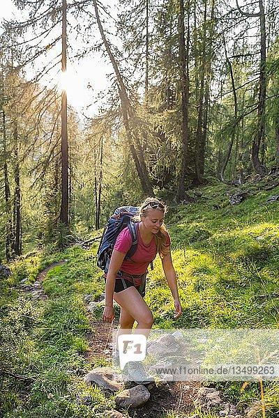 Wanderin beim Aufstieg  Wanderweg zum Feldkogel  Nationalpark Berchtesgaden  Berchtesgadener Land  Oberbayern  Bayern  Deutschland  Europa