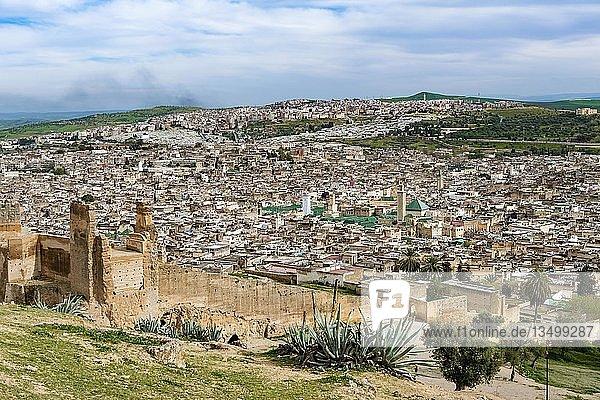 Stadtansicht  Fez mit Stadtmauer  Universität Al Quaraouiyine  dahinter grüne Hügel  Fès  Marokko  Afrika