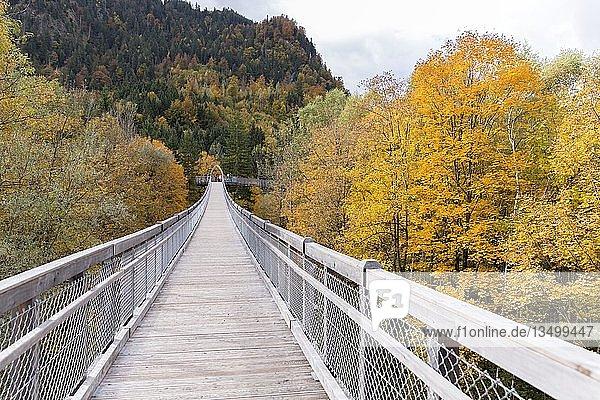 Baumwipfelweg über den Herbstwald am Walderlebniszentrum Ziegelwiesen  Füssen  Bayern  Deutschland  Europa