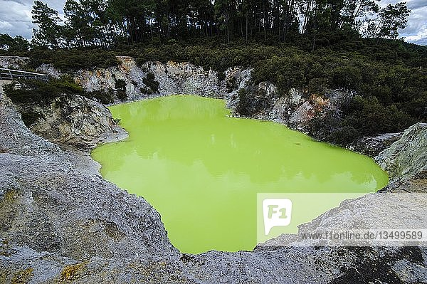 Grüner saurer Krater im Wai-O-Tapu Thermal Wonderland  Nordinsel  Neuseeland  Ozeanien