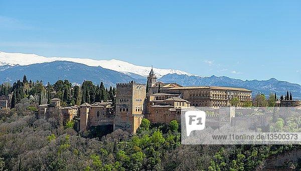 Alhambra auf dem Sabikah-Hügel  maurische Stadtburg  Nasriden-Paläste  Palast Karl des Fünften  hinten Sierra Nevada mit Schnee  Granada  Andalusien  Spanien  Europa