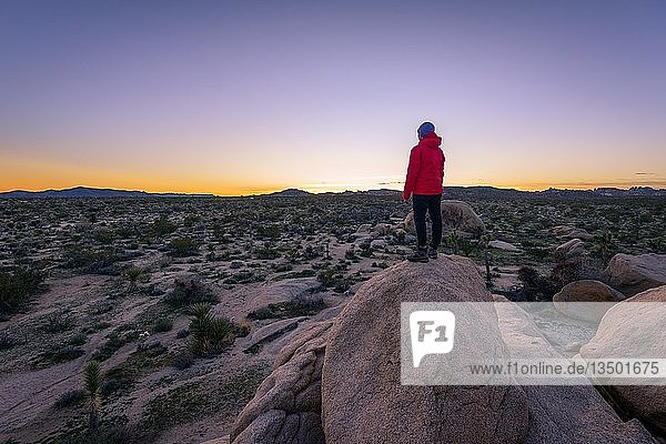 Young woman standing on granite rocks  at sunset  rock formations  White Tank Campground  Joshua Tree National Park  Desert Center  California  USA  North America