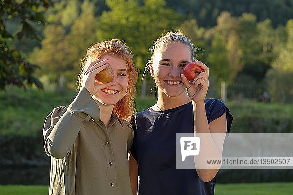 Two girls  young women  laughing eating apples  in the garden  Upper Bavaria  Bavaria  Germany  Europe