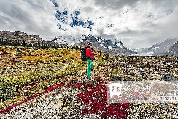 Wanderin  Karge Landschaft  Gletschertal  Berg Mount Athabasca mit Saskatchewan Athabasca Gletscher  Icefields Parkway  Jasper National Park Nationalpark  Canadian Rocky Mountains  Alberta  Kanada  Nordamerika