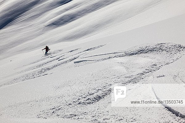 Ski tour  downhill track in untouched ski area  Wertacher Hörnle  Unterjoch  district Oberallgäu  Bavaria  Germany  Europe