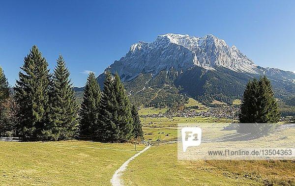 Blick auf die Zugspitze vom Grubigstein  Lermoos  Tirol  Österreich  Europa