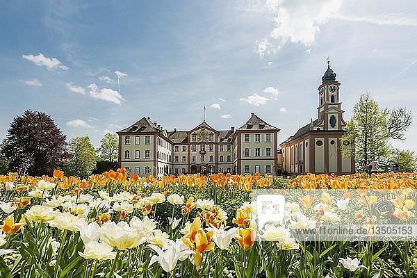 Schloss Mainau und Schlosskirche  und blühende Tulpen  Insel Mainau  Bodensee  Baden-Württemberg  Deutschland  Europa
