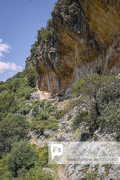Felswand  Die Grüne Schlucht  Garganta Verde  Sierra de Cádiz  Cádiz  Spanien  Europa