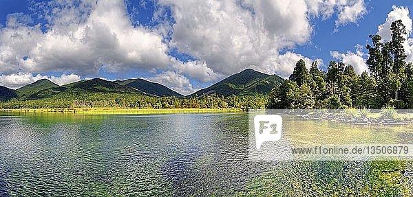 Lake Rotoroa  subtropische Vegetation  Nelson Lakes Nationalpark  Tasman  Südinsel  Neuseeland  Ozeanien