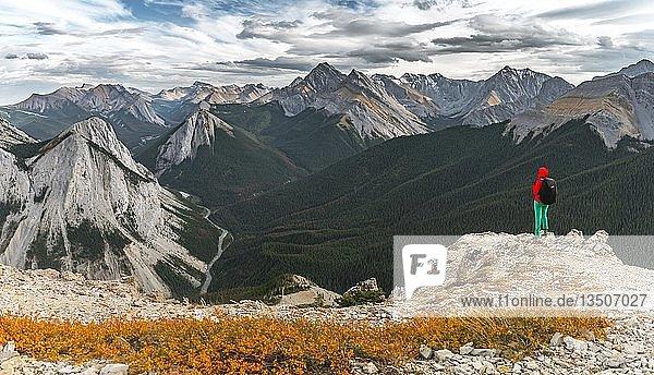 Wanderin auf Gipfel am Sulphur Skyline Trail  blickt über Berglandschaft und Flusstal  Gipfel mit orangene Sulphurablagerungen  Panoramablick  Nikassin Range  Jasper National Park  British Columbia  Kanada  Nordamerika