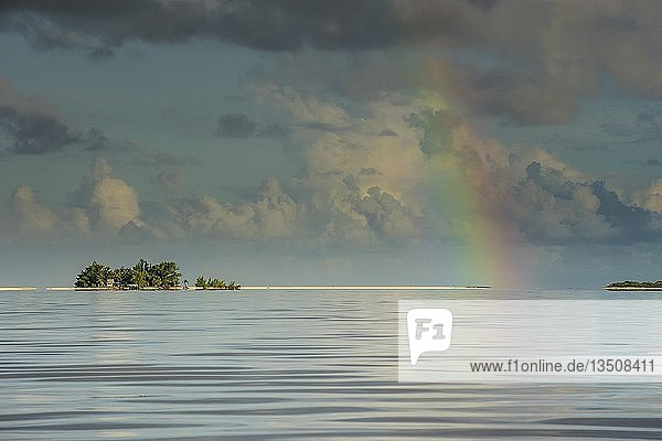 Regenbogen über den Gewässern von Tikehau  Tuamotus  Französisch-Polynesien  Ozeanien