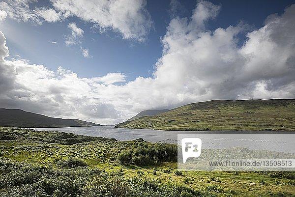 Killary Harbour  Irlands einziger Fjord  County Galway  Irland  Europa