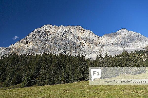 Ausblick auf das Wetterwandeck  Zugspitzmassiv  Ehrwalder Alm  Ehrwald  Tirol  Österreich  Europa