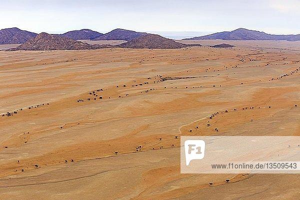 Luftaufnahme  Wüstenlandschaft  Trockenflüsse am Rand der Namib-Wüste  Namib-Naukluft-Nationalpark  Region Erongo  Namibia  Afrika