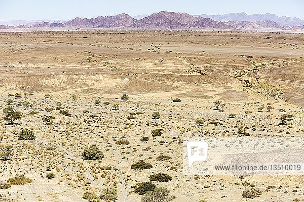 Luftaufnahme  Wüstenlandschaft  hinten Bergkette  Sossusvlei  Namib-Wüste  Namib-Naukluft-Nationalpark  Namibia  Afrika