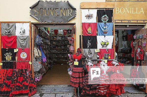 Souvenirladen in Sevilla  Sevilla Provinz  Andalusien  Spanien  Europa