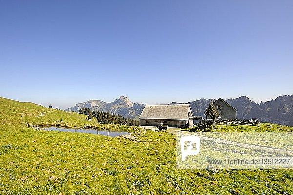 Hofsiedlung auf dem Hochplateau Alpsigel in den Appenzeller Alpen  dahinter der hohe Kasten  Kanton Appenzell-Innerrhoden  Schweiz  Europa