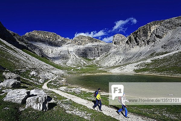 Wanderer auf dem Wanderweg 101  dahinter Gipfel des Einser  Sextener Dolomiten  Hochpustertal  Südtirol  Italien  Europa
