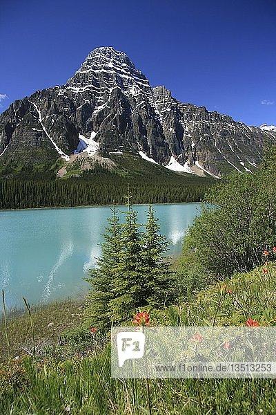 Waterfowl Lake See  Banff Nationalpark  Kanada  Nordamerika