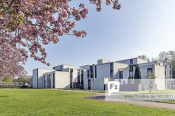 Studentenwohnheim der Fachhochschule der Wirtschaft  FHDW  Paderborn  Ostwestfalen  Nordrhein-Westfalen  Deutschland  Europa