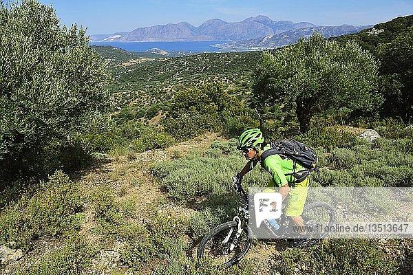 Mountainbiker fährt durch Macchia  bei Kritsa  Agios Nikolaos  Kreta  Griechenland  Europa