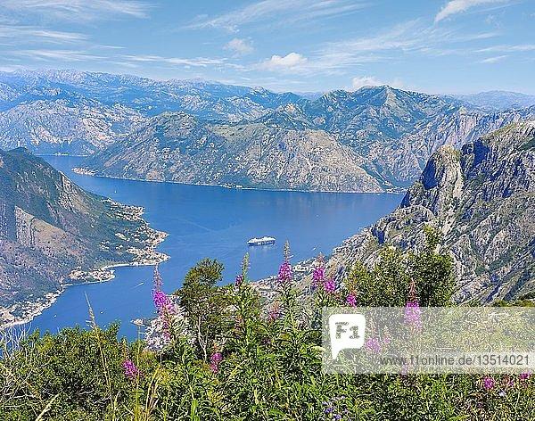 Bucht von Kotor mit den Orten Muo und Prcanj bei Kotor  Montenegro  Europa