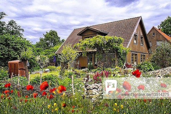Wohnhaus in Gollwitz  Mecklenburg-Vorpommern  Deutschland  Europa