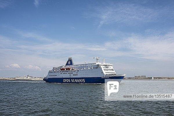 Fährschiff King Seaways an der holländischen Nordseeküste  Ijmuiden  Nordholland  Niederlande  Europa