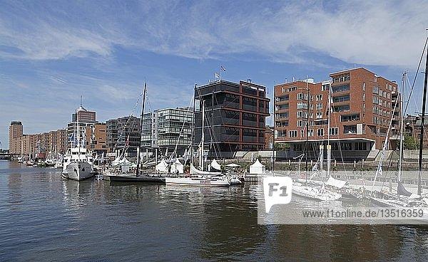 Segelschiffe im Hafen  Sandtorkai  HafenCity  Hamburg  Deutschland  Europa