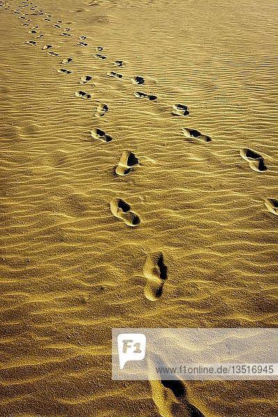 Foot prints in sandy beach  Châtelaillon-Plage near La Rochelle  Charente-Maritime department  Nouvelle-Aquitaine  France  Europe