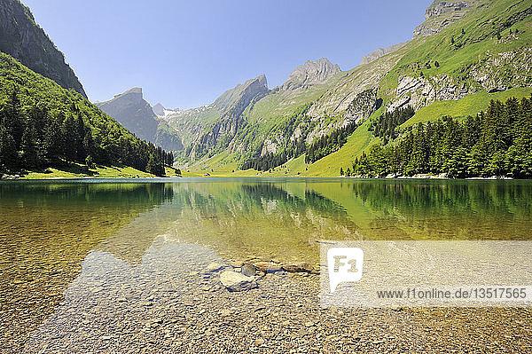 Der 1143 m hoch gelegene Seealpsee in den Appenzeller Alpen  Kanton Appenzell Innerrhoden  Schweiz  Europa