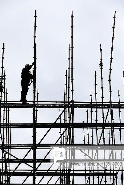 Gerüstbauer bei der Arbeit  Aufbau eines großen Gerüsts  Arbeiten in großer Höhe  Deutschland  Europa