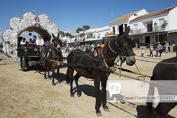 Verzierte Kutsche  Pfingsten  Wallfahrt von EL Rocio  Huelva-Provinz  Andalusien  Spanien  Europa
