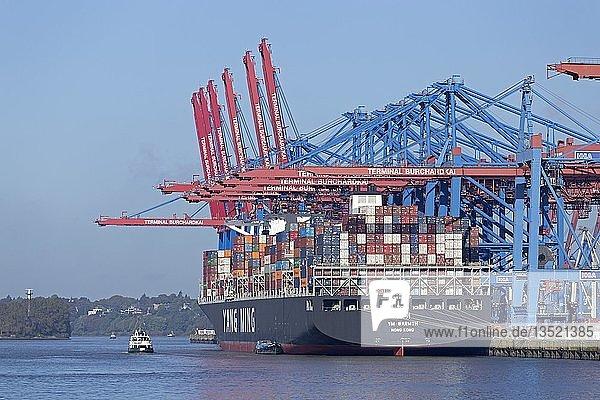 Berladenes Frachtschiff im Hafen  Containerterminal Burchardkai  Waltershof  Hamburg  Deutschland  Europa