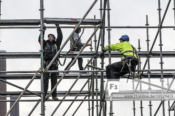 Gerüstbauer bei der Arbeit  Aufbau eines großen Gerüsts  Arbeit in großer Höhe  Deutschland  Europa