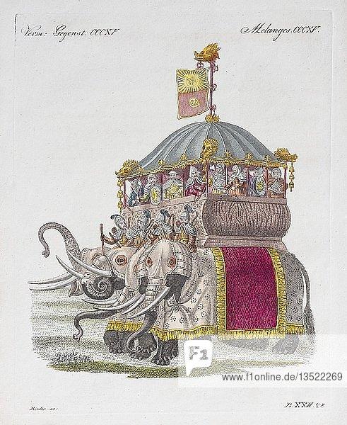 Elephantenburg des Grosskhans Kublai  handkolorierter Kupferstich aus Friedrich Justin Bertuch Bilderbuch für Kinder  1824  Weimar  Deutschland  Europa