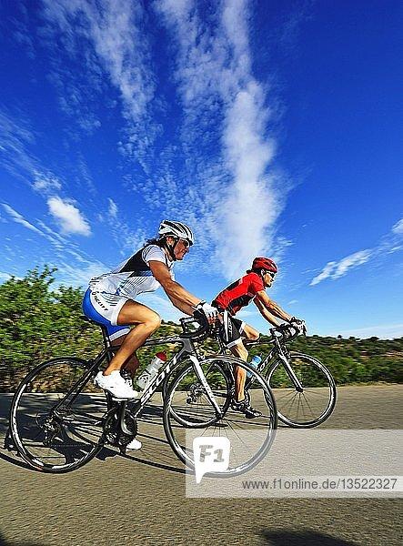 Zwei Rennradfahrer auf der Straße  bei Kalamafka  Kreta  Griechenland  Europa