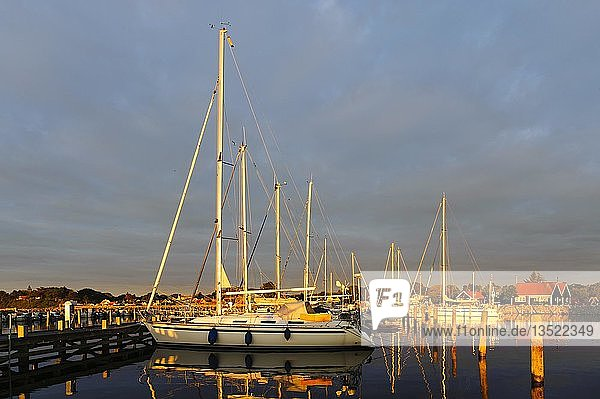 Hafen bei aufgehender Sonne  Spodsbjerg  Langeland  Dänemark  Europa
